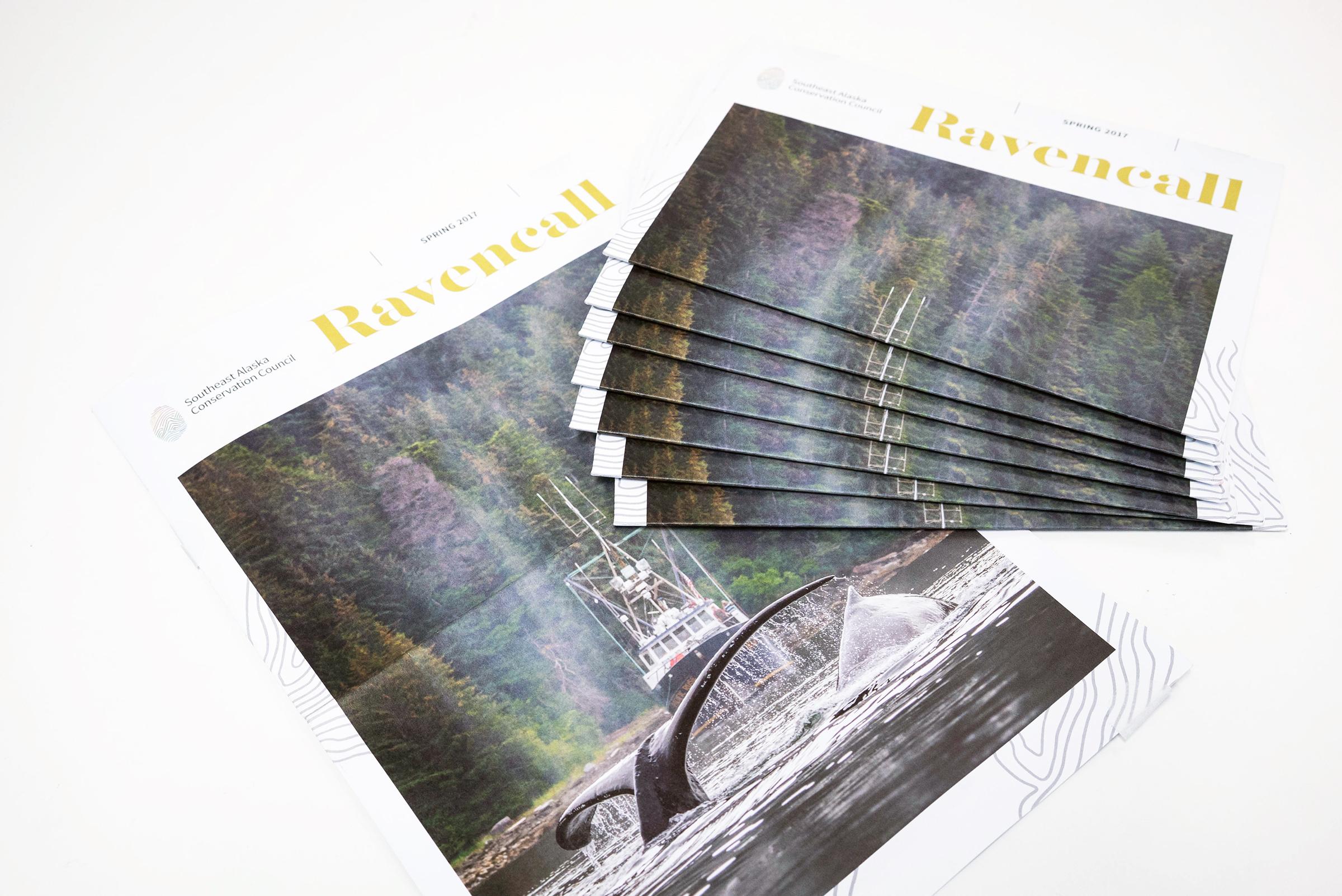 Brochure (1 of 6)
